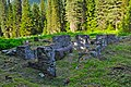 Ruins of Glacier House - panoramio.jpg