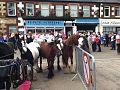 Rumnichal Horse Fair.jpg