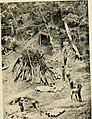 Rural sanitation in the tropics - being notes and observations in the Malay Archipelago, Panama and other lands (1915) (14746009256).jpg