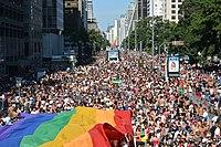 São Paulo LGBT Pride Parade 2014 (14108541924).jpg