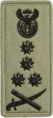 SANDF Rank Insignia General embossed badge left.png