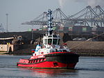 SD SHARK, IMO 9410715 in the Mississippi harbor, Port of Rotterdam, pic5.JPG