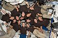 STS-127 group picture 02.jpg