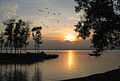 SUNSET IN HOOGLY RIVER.jpg