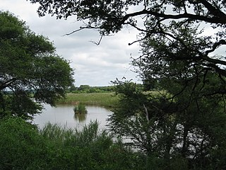 Sabie River river in South Africa and Mozambique