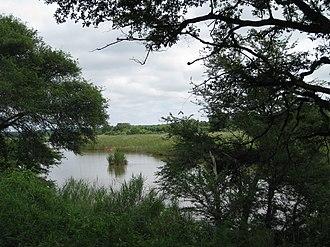 Sabie River - Sabie River east of Skukuza