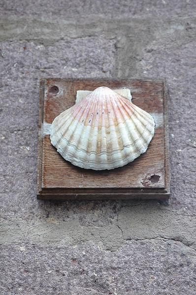 File:Saint Jean Pied de Port Coquille.jpg