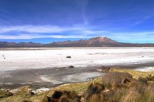 Salar de Surire Natural Monument - Image: Salar de Surire