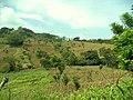 San Pablo Tacachico, El Salvador - panoramio.jpg