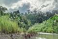 Sangu River 1.jpg