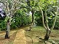 Sankyo Garden - DSC01169.JPG
