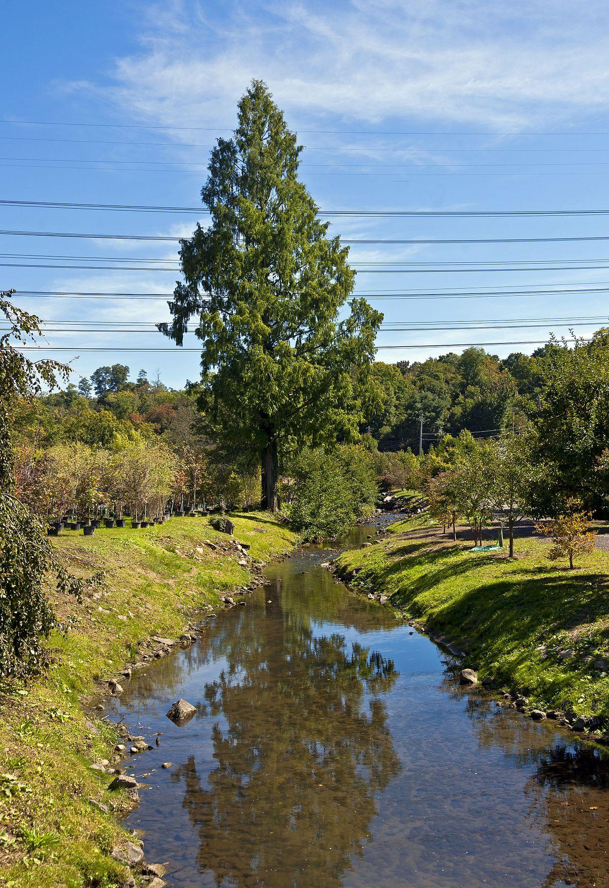 Saw Mill River - Wikipedia
