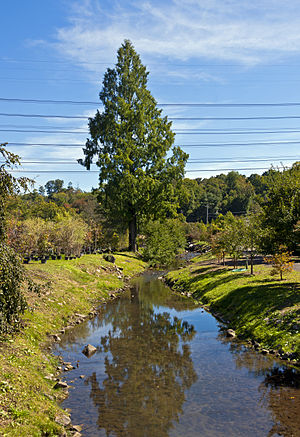 Saw Mill River - Saw Mill River in Hawthorne