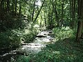 Schlaube bei Kupferhammer (2015-08-26).jpg