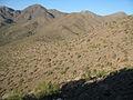 Scottsdale hills.JPG