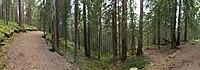 Seitseminen - Multiharju panorama.jpg