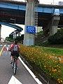 Seoul, Korea August, 2014 (14810607576).jpg