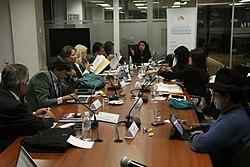 Sesión de la Comisión de Relaciones Internacionales (15756786303).jpg