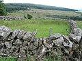 Sheepfold near Peat Burn - geograph.org.uk - 882258.jpg