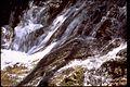Shenandoah National Park SHEN9153.jpg