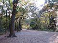 Shimogamo Izumigawacho, Sakyo Ward, Kyoto, Kyoto Prefecture 606-0807, Japan - panoramio (1).jpg