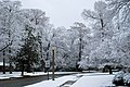 Shreveport snow DSC 0030 (4350649213).jpg