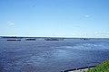 Sibirsk (4388288148).jpg