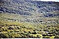 Sierra Momia-casa.jpg