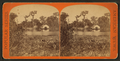 Silver Springs, general view, from Robert N. Dennis collection of stereoscopic views.png