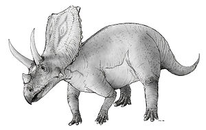 en:Chasmosaurus