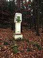 Skočice - les - panoramio (1).jpg