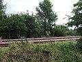 Sleaford to Spalding Railway (geograph 3618494).jpg