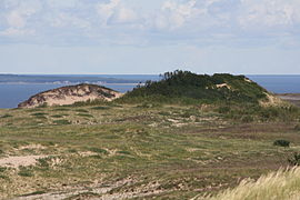 Sleeping Bear Dune August 2011.jpg