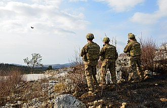 Close air support - U.S. Army paratroopers assigned to the Company B, 2nd Battalion, 503rd Infantry Regiment, 173rd Airborne Brigade, observe a U.S. Air Force F-16 Falcon during close air support training at Pocek Range in Postojna, Slovenia, March 12, 2015.