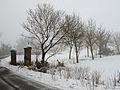 Snowfall - Via Molinazza, Scandiano, Reggio Emilia, Italy - January 30, 2011 02.jpg