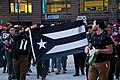 Solidarity With Puerto Rico Rally Chicago Illinois 5-7-18 1445 (41988964652).jpg