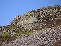 Southern buttress on Rhinog Fawr - geograph.org.uk - 1273998.jpg