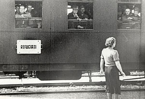 Population transfer in the Soviet Union - A train with Romanian refugees following the Soviet annexation of Bessarabia