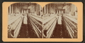 Spinning room, Cotton mill, Langley, S.C, from Robert N. Dennis collection of stereoscopic views.png
