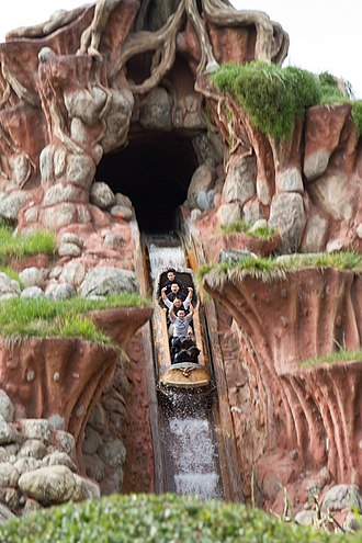 Splash Mountain - One of the logs descending the final drop on the ride at Disneyland
