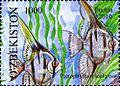 Stamps of Uzbekistan, 2010-76.jpg