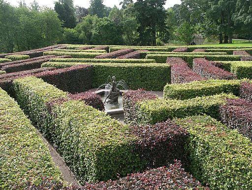 Star Maze in the Scone Palace Grounds 01