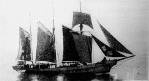 Mary B Mitchell (schooner) - Image: State Lib Qld 1 147123 Mary B. Mitchell (ship)