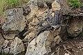 Stausee Ottenstein 6294.JPG