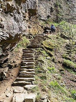 Steps at Hareshaw Linn - geograph.org.uk - 1255525