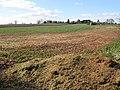 Stocks Farm Bottom Field in March - geograph.org.uk - 1227084.jpg