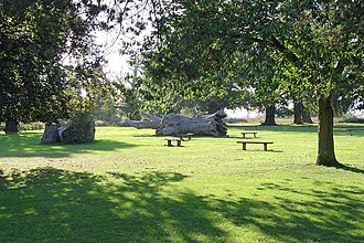 Stockwood Park - Image: Stockwoodpark