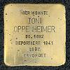 Stolperstein Treburer Str 23 Oppenheimer Toni