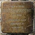 Stolperstein Motzstr 51 (Schön) Walter Herzberg.jpg