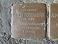 Stolperstein Willy Rosenberg, 1, Große Werlstraße 6, Wiescherhöfen, Hamm.jpg